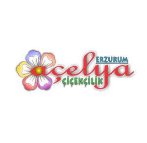 Erzurum Açelya Çiçekçilik